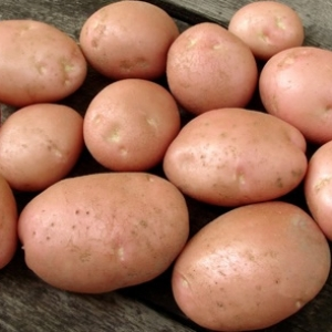 Kerr Pinks Potatoes  5kg